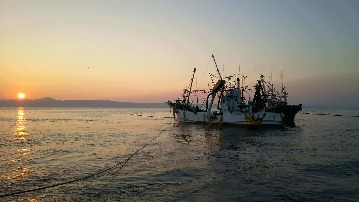 かがのと海鮮処 旬魚亭