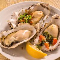 【牡蠣は年中無休】 産地直送の新鮮な牡蠣を1年中楽しめます◎