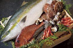越前漁港から獲れたての鮮魚をお届けしております♪