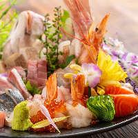 【新潟個室居酒屋】 採れたて鮮魚が満載◎飲み放題付きコースも