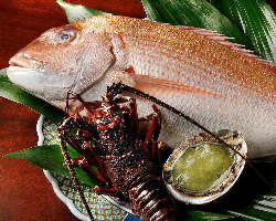 その日の朝獲れ天然活〆鮮魚で彩ります。ご予約で天然真鯛も◎