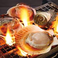 生簀の新鮮魚貝 真鯛、しまあじ、さざえ、白はまぐりなど…