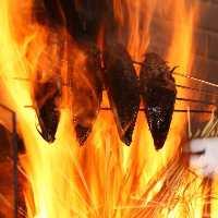 オープンキッチンでの匠の技が冴える藁焼き実演は迫力満点!