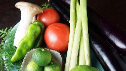 鮮魚はもちろん、野菜も地産地消を意識して入荷しております。