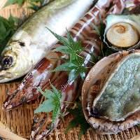 鳴門の渦潮でもまれ育った新鮮な魚介をご提供しております。