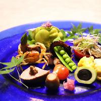 器との調和も考え抜かれたお料理の数々。特別なお席を彩ります。