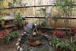 カウンターから眺める坪庭は、しっとりとした趣のある茶室露地風