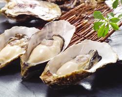 かき鮮 海風土(うぶど)