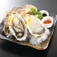 宮城県石巻産「桃浦牡蠣」を使用したメニュー多数