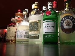 ジンだけでも13種類、お酒好きにはたまらない