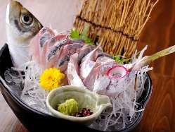 【旬の鮮魚】 新鮮魚介を豪快に!お酒と相性◎