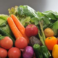 季節にあった旬の食材を全国からお取り寄せ!