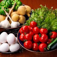 【新鮮野菜】 旬にこだわった厳選野菜の味わいをぜひご堪能あれ