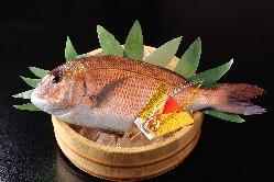 顔合わせご利用の方には「鯛の姿焼き」をプレゼント致します。