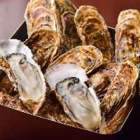 ●三陸名物● 季節を問わず年中良質な牡蠣を食べられます