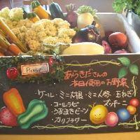 野菜ソムリエ在中しております☆こだわりの新鮮野菜をご提供