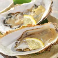 石巻産の殻付き牡蠣!三陸産の旨味をお楽しみください!