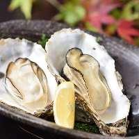 【牡蠣料理】 広島湾より程近い離島 似島の牡蠣は身がぷりぷり
