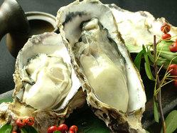 〓三浦さんの牡蠣〓 次のシーズンまで待ち遠しい♪♪