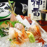 鮮魚の刺身5種盛り