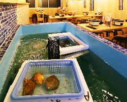 店内の水槽から新鮮な貝をお出しいたします。