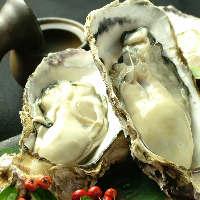 ★1年中食せます!!★ 日本一!との呼び声高い三浦さんの牡蠣