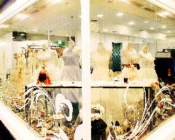 併設のドレスショップで、ドレスレンタルも行っております。
