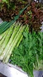 世羅の無農薬野菜を使用しております。