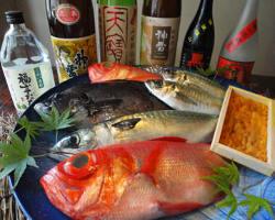 【鮮度抜群】プリップリの旬魚は絶品 地酒とご一緒に!