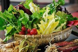 【厳選素材】 牛肉はもちろん野菜やお米にもこだわります。