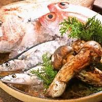 店主が広島全土の素材・お酒・調味料まで厳選した大人の和食