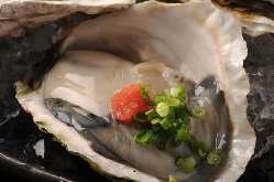 春先には隠岐岩牡蠣「春香」、夏は天然岩牡蠣「夏輝」も!