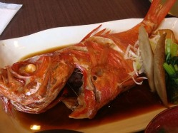 営業中、お客様が目で見た魚をお好きな調理法で料理致します。