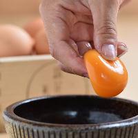 【鮮度抜群の卵】 特殊な飼料で育てた鶏が産んだ美豊卵です