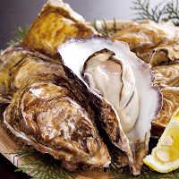 旬の食材を使用した創作料理がリーズナブルに味わえる