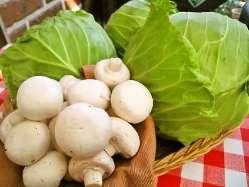 瀬戸内の新鮮な野菜を使用しております。