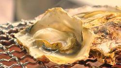 江田島市能美町の内藤水産様より直接仕入れているぷりぷりの牡蠣