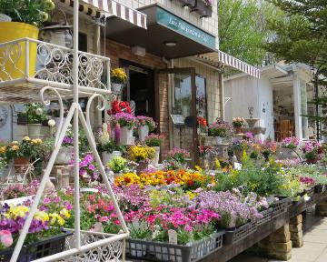 レイクサイド ガーデン&カフェ