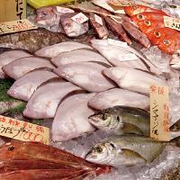 毎日入荷の日替わり鮮魚。