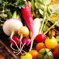 【地産地消】 地元の旬の食材を使い毎日変わるおばんざいを提供
