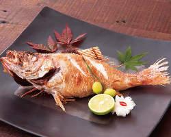 日本海の高級魚のどぐろ 至福の味をご堪能下さい