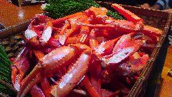紅ズワイ蟹、たくさん入荷