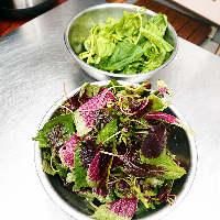 旬の野菜を使用した料理を堪能下さい。